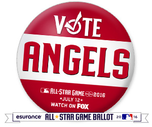 Vote Angels