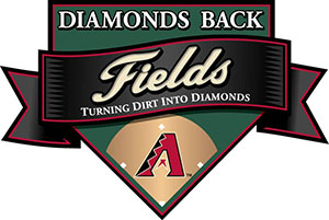 Diamonds Back Field Building Program