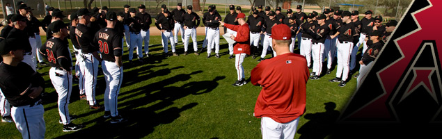 Arizona Diamondbacks Fantasy Camp