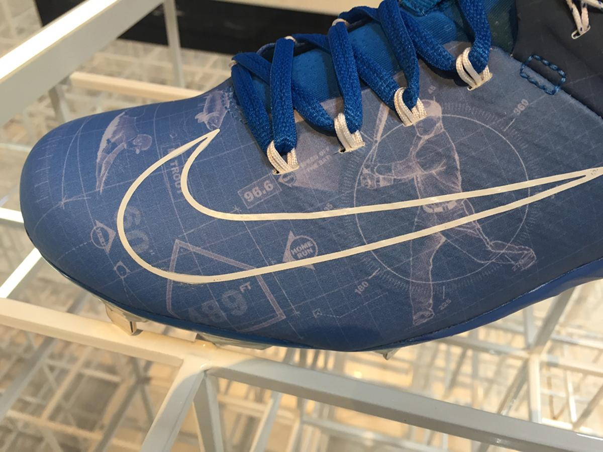 Trout shoe