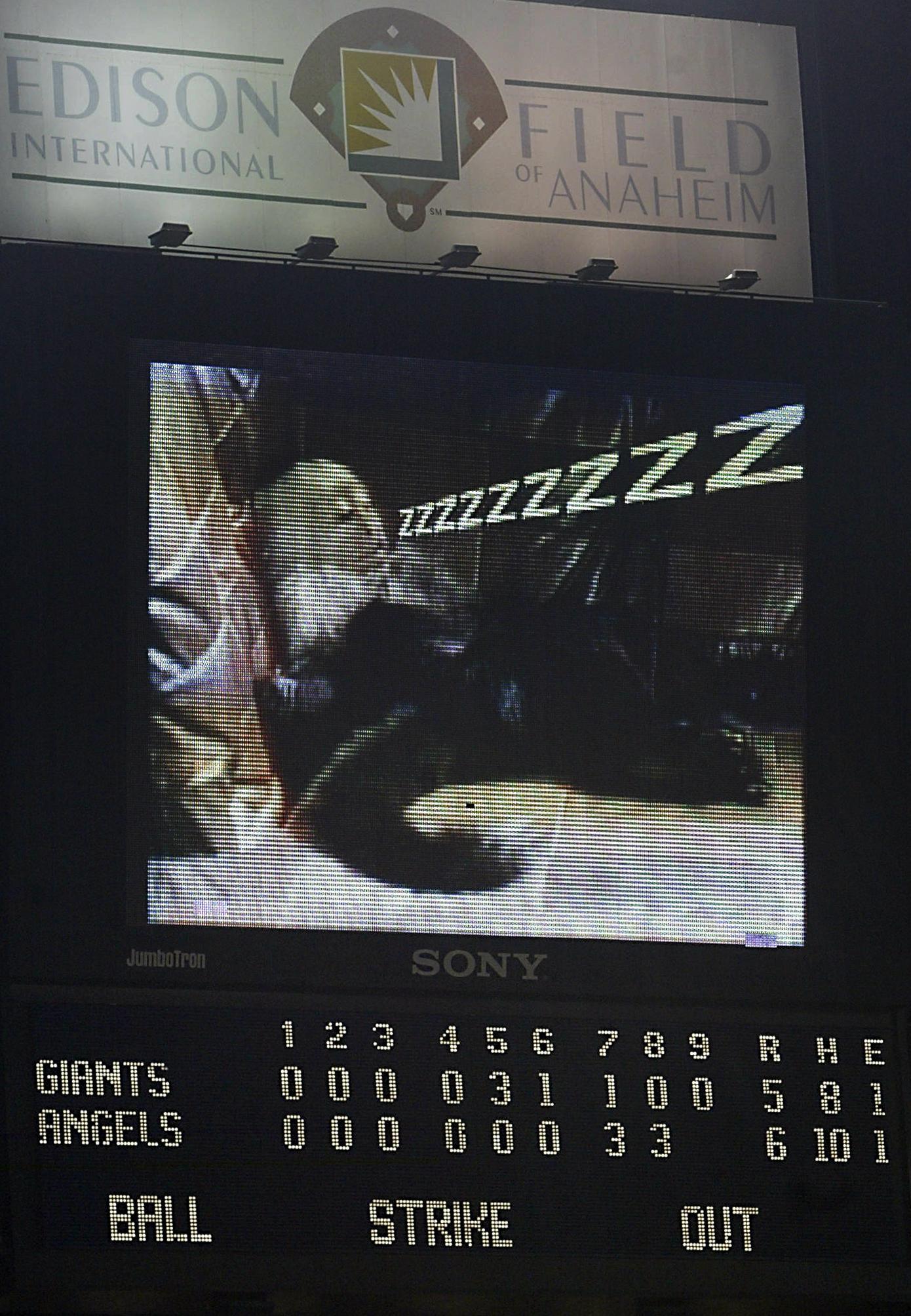 Rally Monkey sleeping