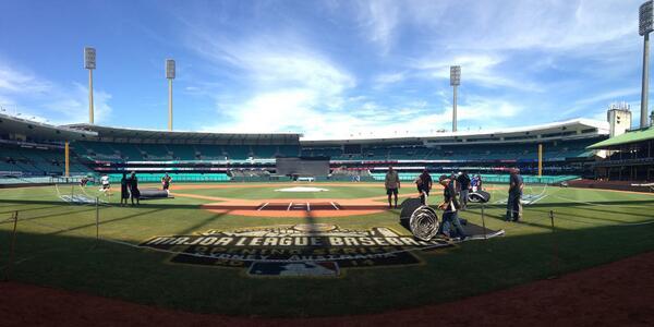 Aussie field