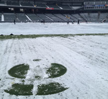 Snow angels at Coors Field