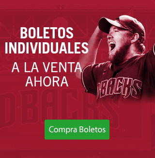 Boletos Individuales 2017