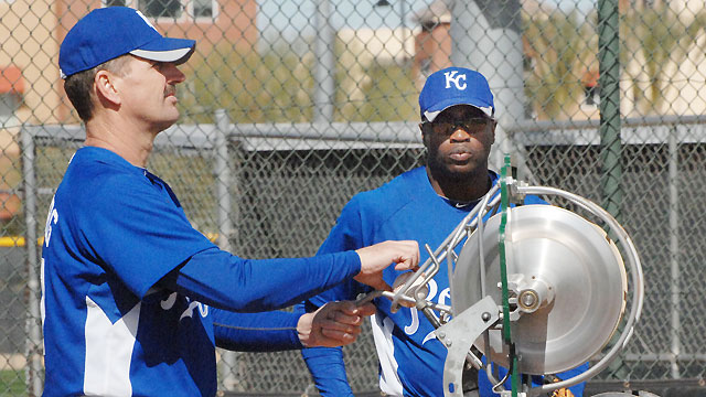 Bradshaw named Minor League hitting coordinator