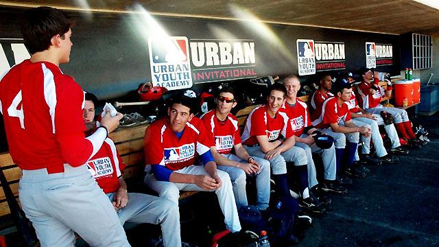 southern tier adult baseball