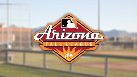 Mets Release Arizona Fall League Roster