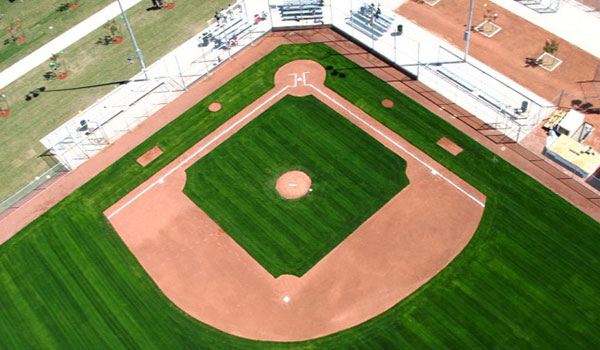 Experts In Your Field: Field renovation and construction projects