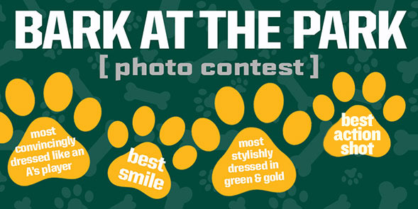Bark at the Park Photo Contest