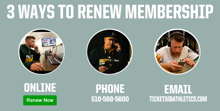 3 Ways to Renew - Online, Phone, Coliseum